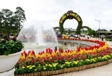 SAIGON - DALAT - MUINE - SAIGON TOUR 7 DAYS 6 NIGHTS (Private tour)