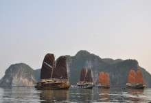 CATBA SAILING JUNK 2 DAYS 1 NIGHT & 3 DAYS 2 NIGHTS from 358 USD/PERSON only