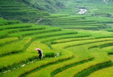 HANOI - SAPA - HALONG PACKAGE TOUR 5 DAYS 4 NIGHTS